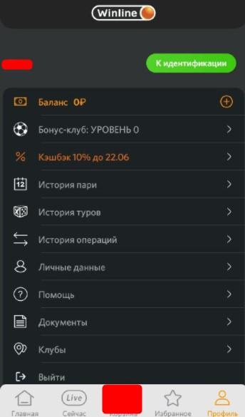 Интерфейс личного кабинета винлайн приложения